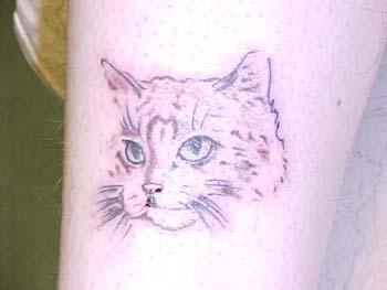 cats swingerclub de tattoo studio fulda